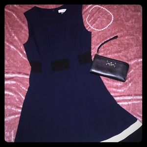 Fit and flare Calvin Klein dress